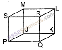 RBSE Solutions for Class 6 Maths Chapter 10 त्रिविमीय आकारों की समझ Ex 10.1 image 2