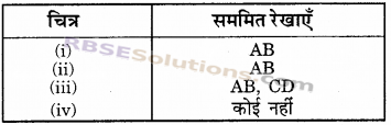 RBSE Solutions for Class 6 Maths Chapter 11 सममिति In Text Exercise image 3
