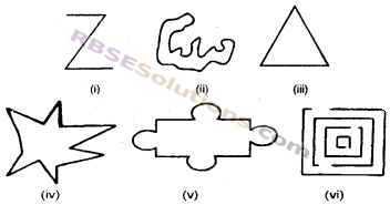 RBSE Solutions for Class 6 Maths Chapter 9 सरल द्विविमीय आकृतियाँ Ex 9.1 image 1