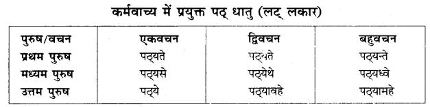 RBSE Class 10 Sanskrit व्याकरणम् वाच्य-परिवर्तनम् image 4