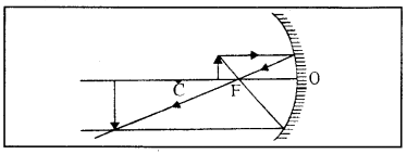 RBSE Class 10 Science Model Paper 1 image 23