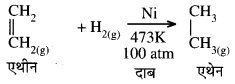 RBSE Class 10 Science Model Paper 1 image 6