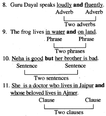 RBSE Class 5 English Grammar Connectives Conjunctions image 2