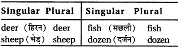 RBSE Class 6 English Vocabulary Number image 13