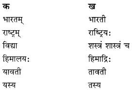 RBSE Solutions for Class 10 Sanskrit स्पन्दन Chapter 3 स्वराष्ट्र-गौरवम् image 2
