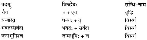 RBSE Solutions for Class 10 Sanskrit स्पन्दन Chapter 3 स्वराष्ट्र-गौरवम् image 3