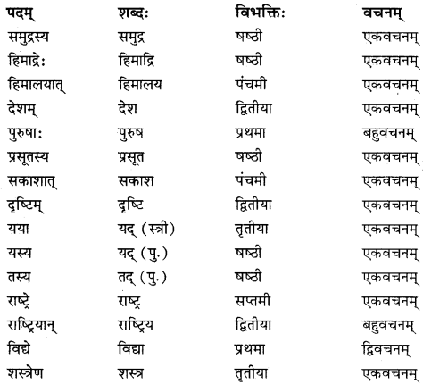 RBSE Solutions for Class 10 Sanskrit स्पन्दन Chapter 3 स्वराष्ट्र-गौरवम् image 6