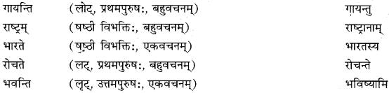 RBSE Solutions for Class 10 Sanskrit स्पन्दन Chapter 3 स्वराष्ट्र-गौरवम् image 8b
