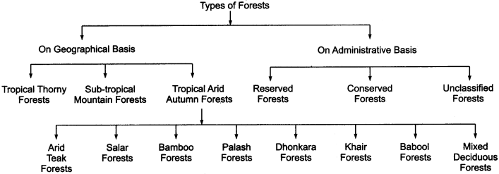 RBSE Solutions for Class 11 Indian Geography Chapter 13 Rajasthan Climate Vegetation and Soil img-2
