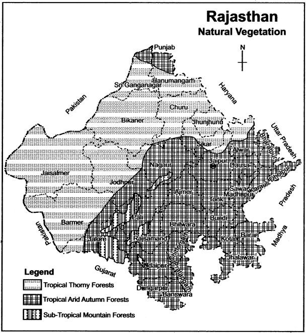 RBSE Solutions for Class 11 Indian Geography Chapter 13 Rajasthan Climate Vegetation and Soil img-3