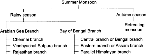 RBSE Solutions for Class 11 Indian Geography Chapter 6 Climate of India img-2