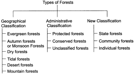 RBSE Solutions for Class 11 Indian Geography Chapter 8 Natural Vegetation of India img-2