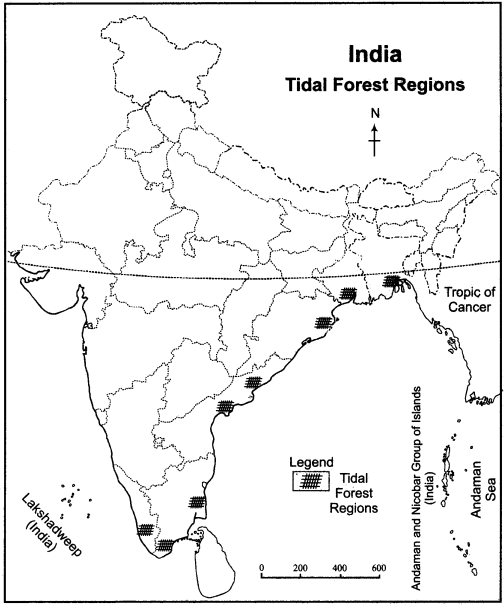RBSE Solutions for Class 11 Indian Geography Chapter 8 Natural Vegetation of India img-5