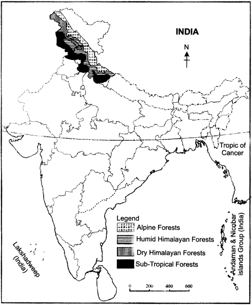 RBSE Solutions for Class 11 Indian Geography Chapter 8 Natural Vegetation of India img-6