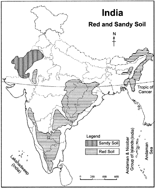 RBSE Solutions for Class 11 Indian Geography Chapter 9 Soil of India img-1