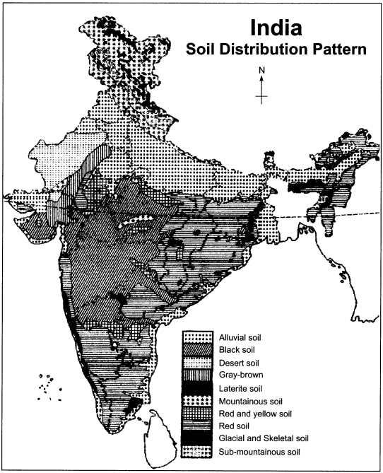 RBSE Solutions for Class 11 Indian Geography Chapter 9 Soil of India img-3