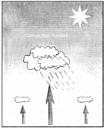 RBSE Solutions for Class 11 Physical Geography Chapter 15 Condensation and Rainfall img-2