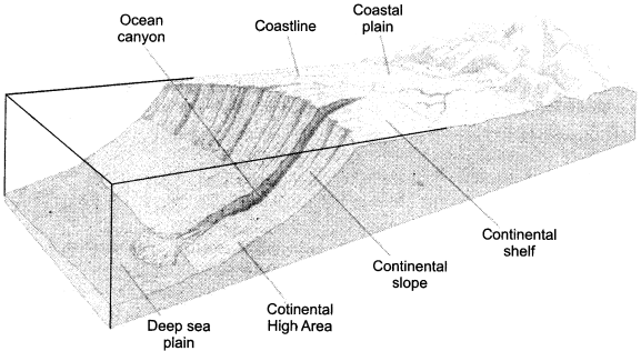 RBSE Solutions for Class 11 Physical Geography Chapter 19 Ocean Relief Temperature and Salinity img-1
