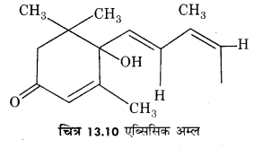 RBSE Solutions for Class 12 Biology Chapter 13 पादप वृद्धि