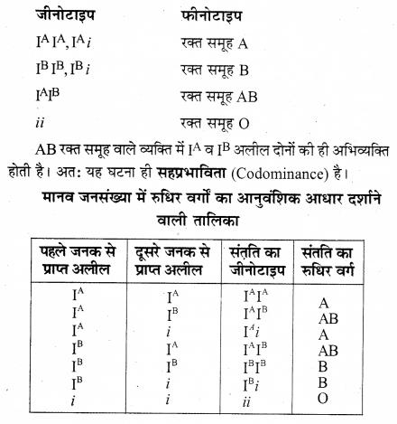 RBSE Solutions for Class 12 Biology Chapter 35 मेंडल के आनुवंशिकता के नियम 4