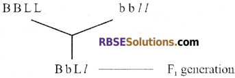 RBSE Solutions for Class 12 Biology Chapter 36 Man-Chromosomal Aberrations img 1