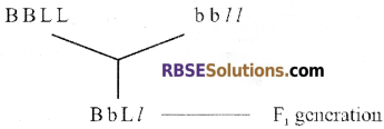 RBSE Solutions for Class 12 Biology Chapter 36 Man-Chromosomal Aberrations img 4