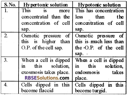 RBSE Solutions for Class 12 Biology Chapter 5 Plant Water Relations 3