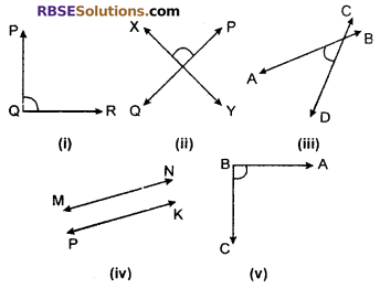 RBSE Solutions for Class 6 Maths Chapter 8 Basic Geometrical Concepts and Shapes Ex 8.2 image 6