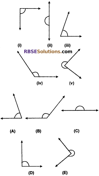 RBSE Solutions for Class 6 Maths Chapter 8 Basic Geometrical Concepts and Shapes Ex 8.3 image 16