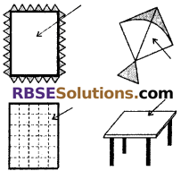 RBSE Solutions for Class 6 Maths Chapter 9 Simple Two Dimensional Shapes In Text Exercise image 12