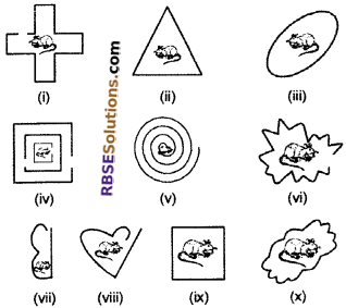 RBSE Solutions for Class 6 Maths Chapter 9 Simple Two Dimensional Shapes In Text Exercise image 6