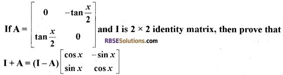 RBSE Class 12 Maths Model Paper 2 English Medium 5