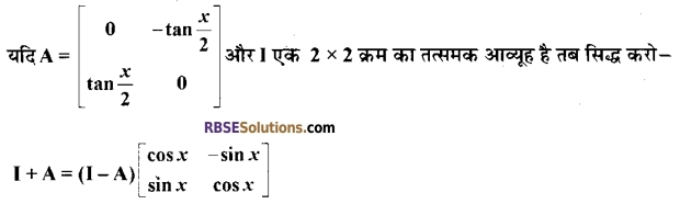 RBSE Class 12 Maths Model Paper 4 4
