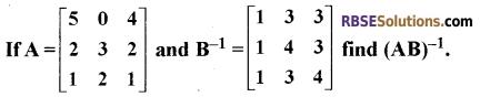 RBSE Class 12 Maths Model Paper 4 English Medium 10