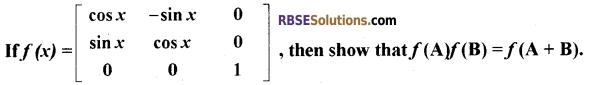 RBSE Class 12 Maths Model Paper 4 English Medium 4