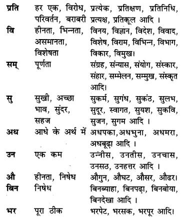 RBSE Class 7 Hindi व्याकरण उपसर्ग 3