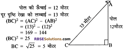 RBSE Solutions for Class 10 Maths Chapter 19 सड़क सुरक्षा शिक्षा 29