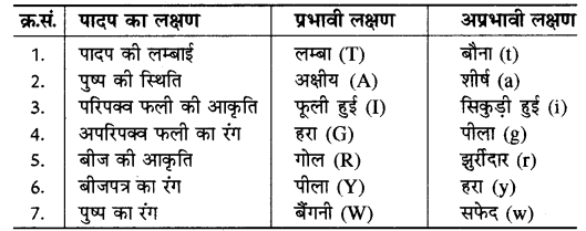 RBSE Solutions for Class 10 Science Chapter 3 आनुवंशिकी image - 10