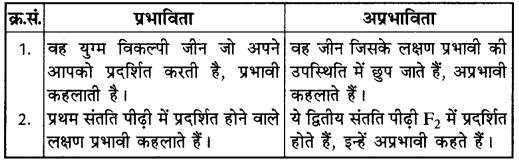 RBSE Solutions for Class 10 Science Chapter 3 आनुवंशिकी image - 11