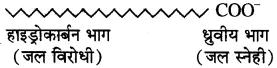 RBSE Solutions for Class 10 Science Chapter 5 दैनिक जीवन में रसायन image - 10
