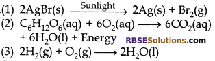 RBSE Solutions for Class 10 Science Chapter 6 Chemical Reaction and Catalyst - 13