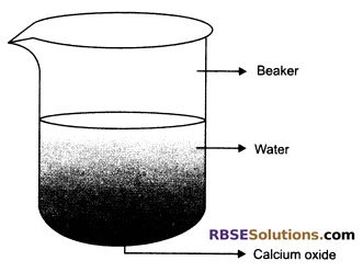 RBSE Solutions for Class 10 Science Chapter 6 Chemical Reaction and Catalyst - 26