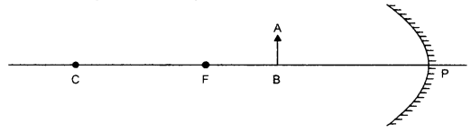 RBSE Solutions for Class 10 Science Chapter 9 Light - 38