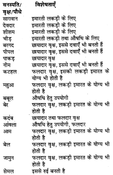 RBSE Solutions for Class 7 Hindi Chapter 12 वन-श्री 2