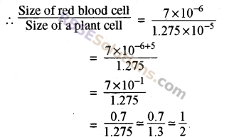 RBSE Solutions for Class 8 Maths Chapter 3 Powers and Exponents Additional Questions 17