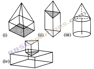RBSE Solutions for Class 8 Maths Chapter 8 Visualization of Solids Ex 8.1 img-2