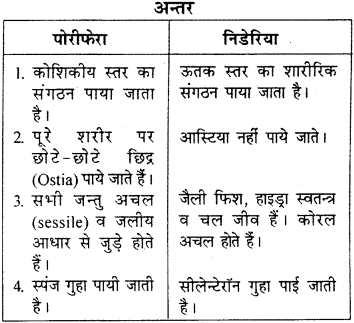 RBSE Solutions for Class 9 Science Chapter 7 जैव विविधता 3